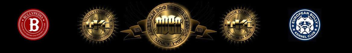 Abkc Logo 3
